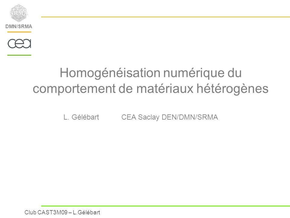 Homogénéisation numérique du comportement de matériaux hétérogènes