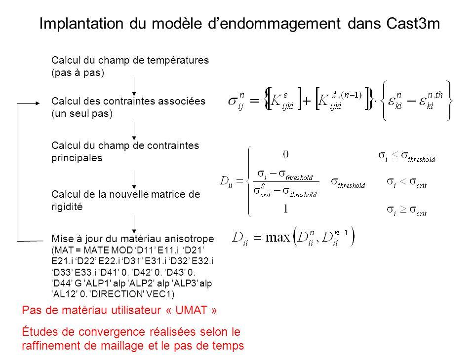 Implantation du modèle d'endommagement dans Cast3m