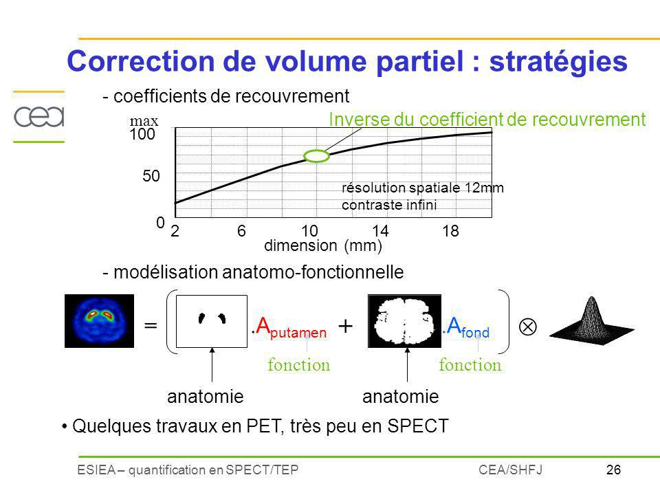 Correction de volume partiel : stratégies
