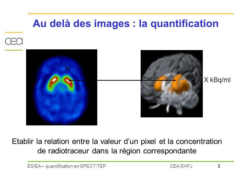 Au delà des images : la quantification