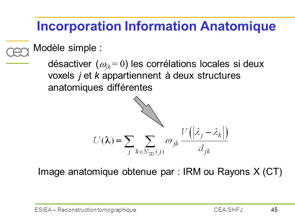 Incorporation Information Anatomique