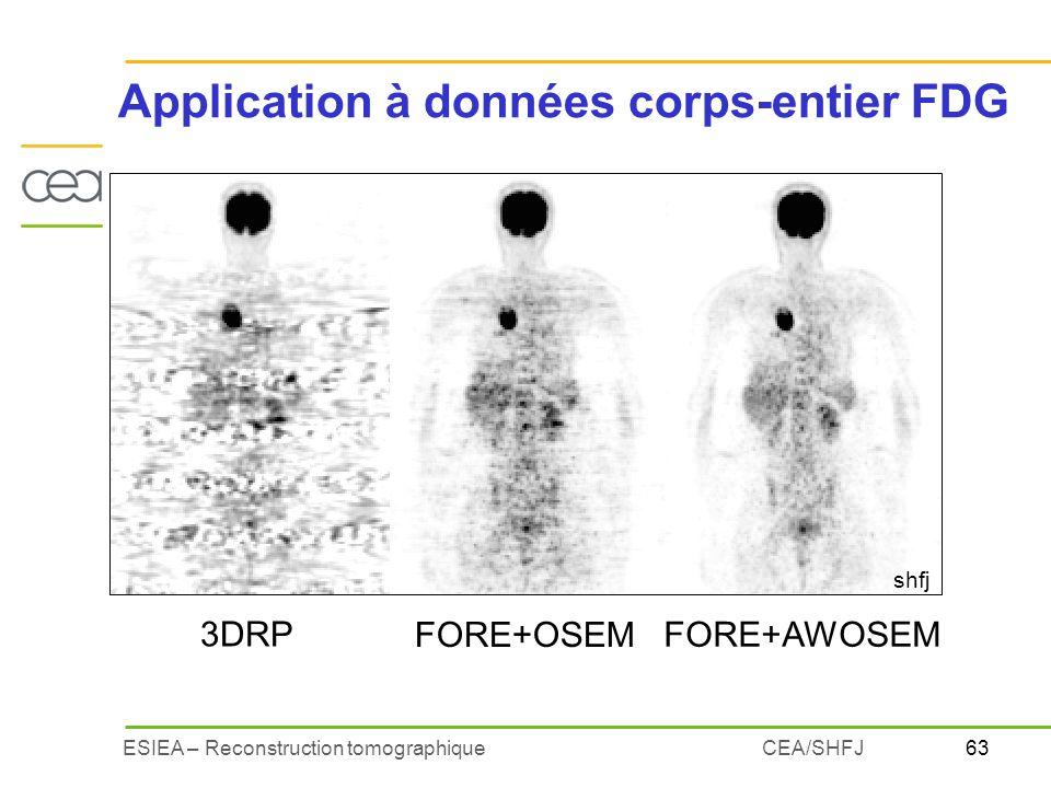Application à données corps-entier FDG