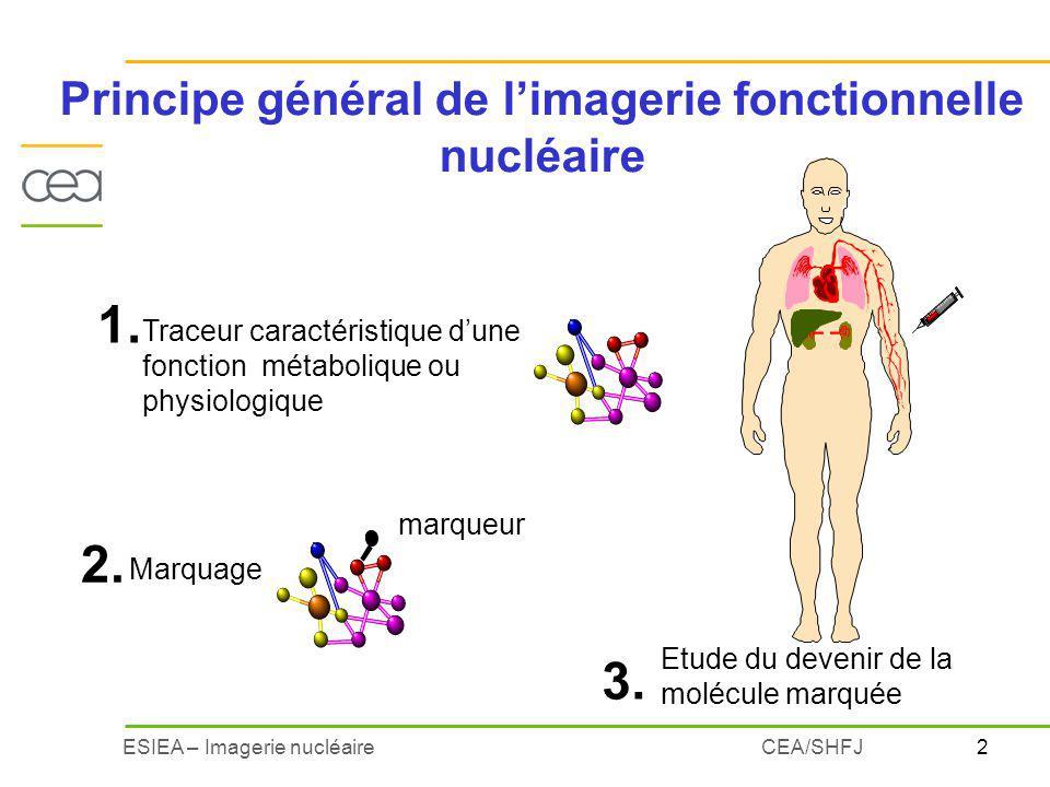 Principe général de l'imagerie fonctionnelle nucléaire