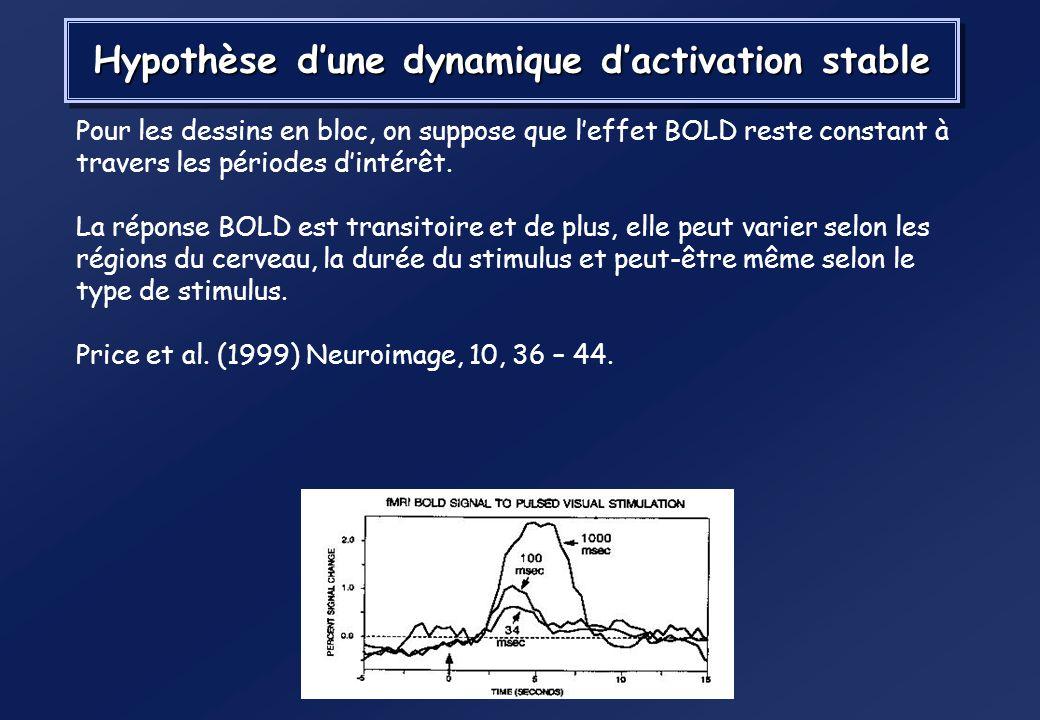 Hypothèse d'une dynamique d'activation stable