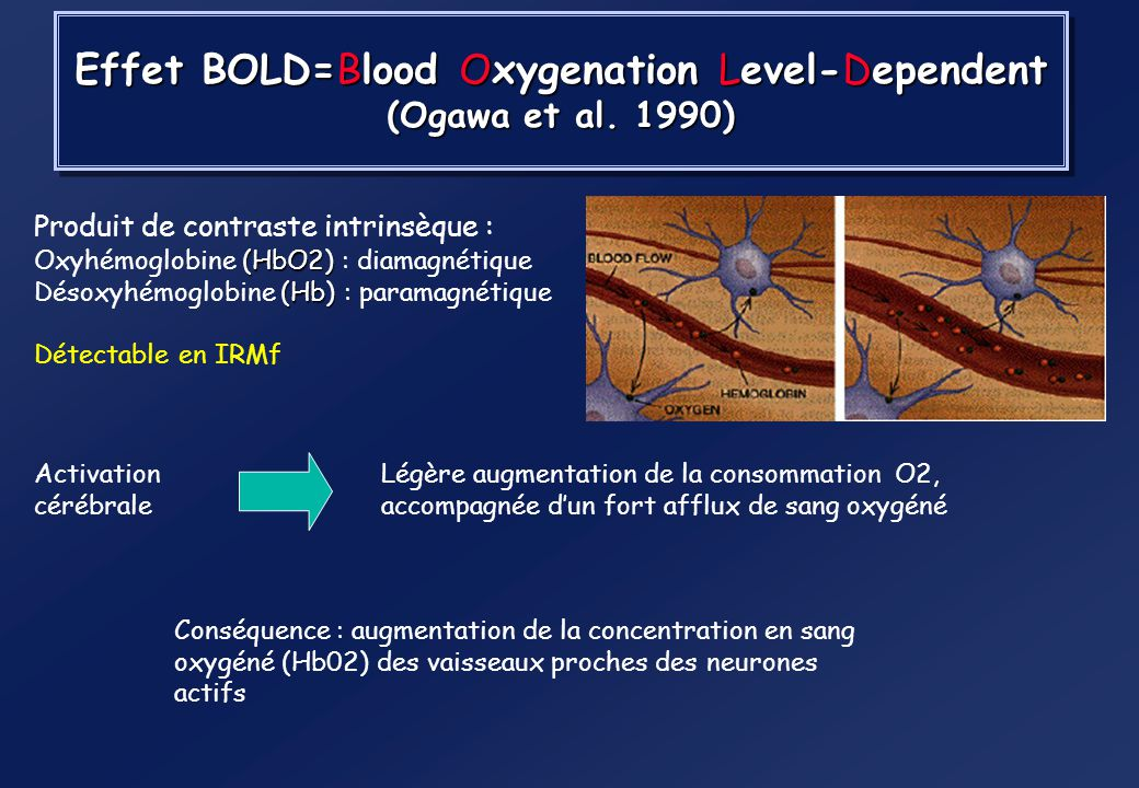 Effet BOLD=Blood Oxygenation Level-Dependent (Ogawa et al. 1990)