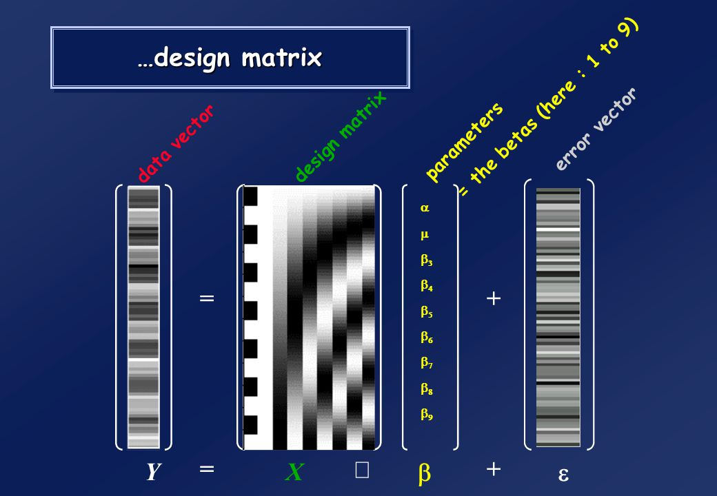 …design matrix = + Y = X ´ b + e = the betas (here : 1 to 9)