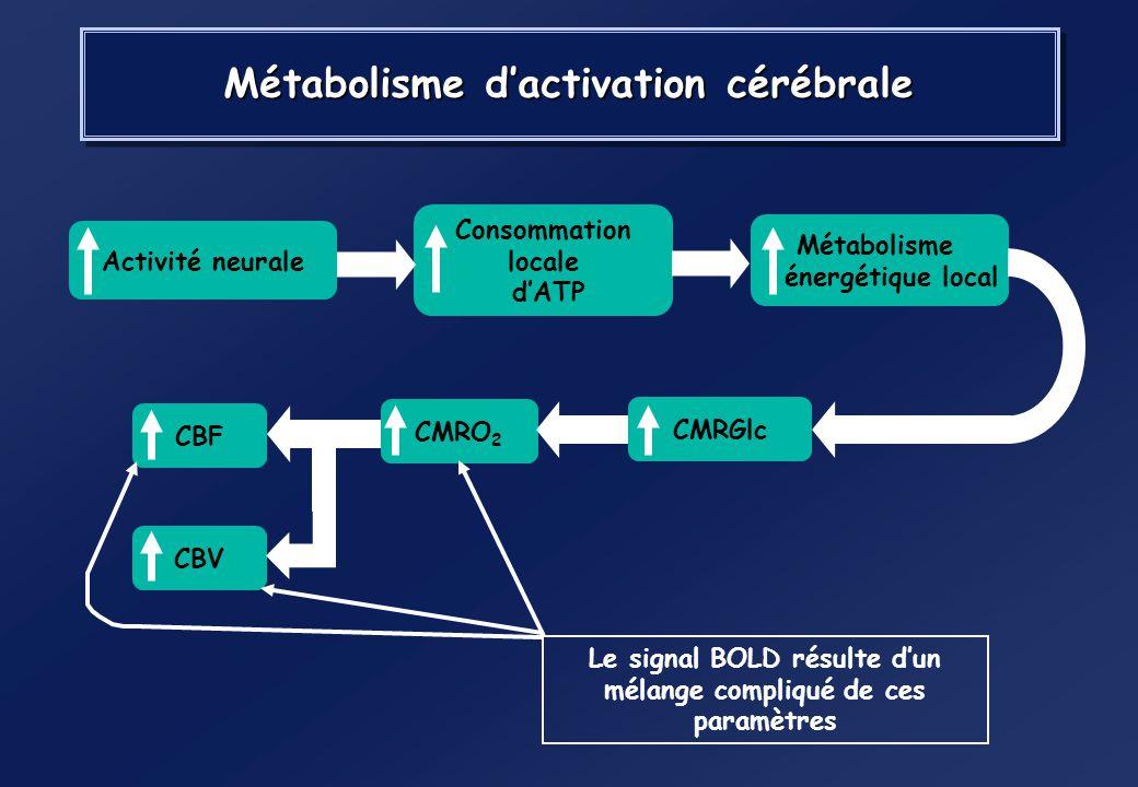 Métabolisme d'activation cérébrale