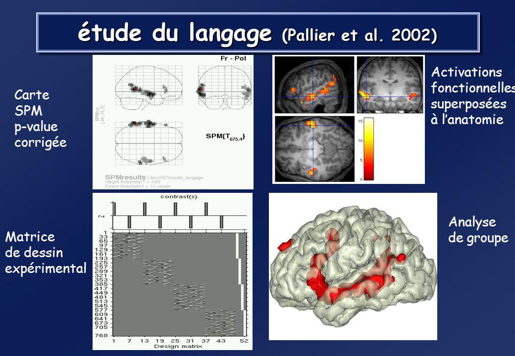 étude du langage (Pallier et al. 2002)