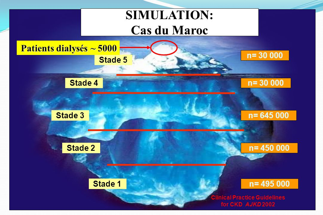 SIMULATION: Cas du Maroc Clinical Practice Guidelines