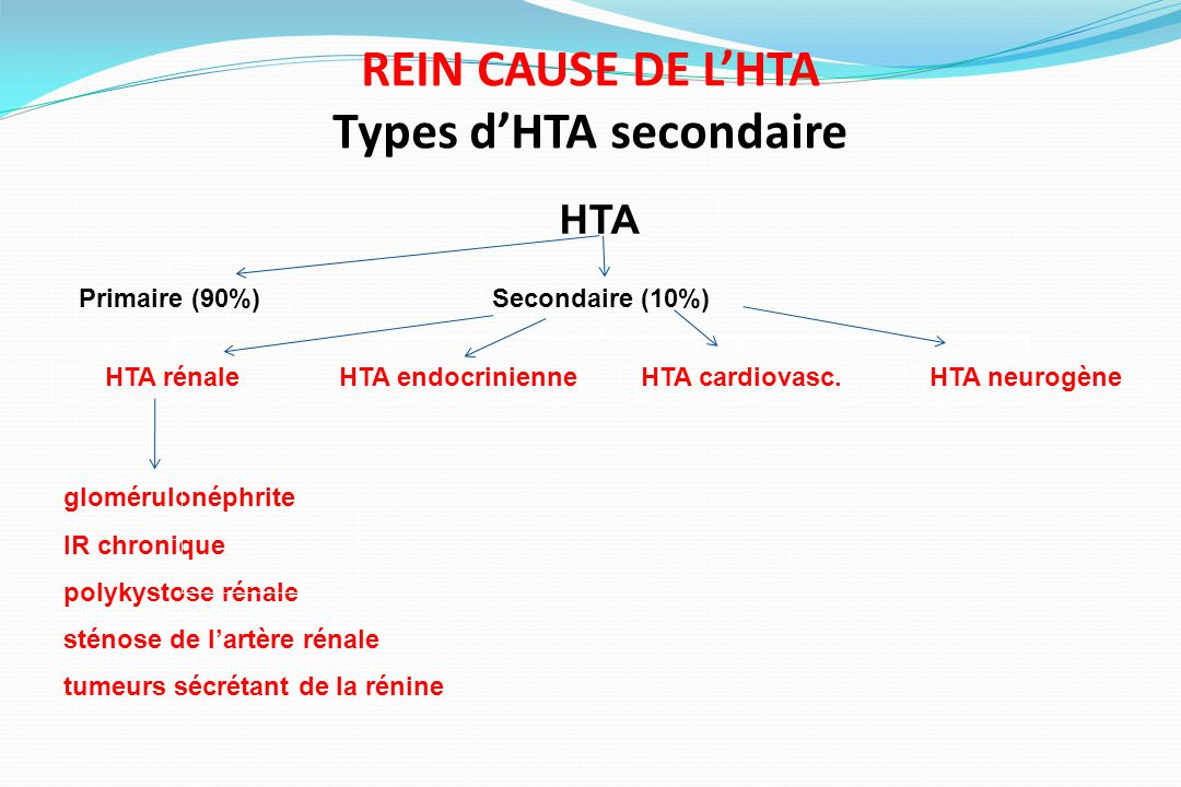 REIN CAUSE DE L'HTA Types d'HTA secondaire