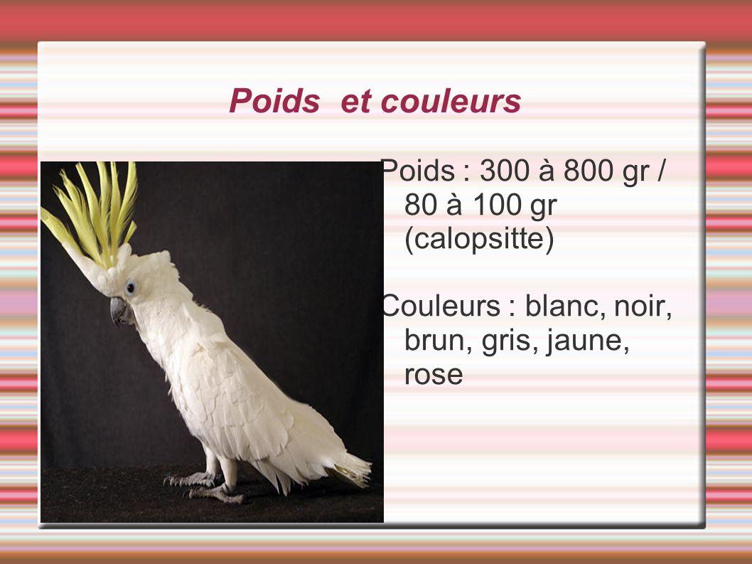 Poids et couleurs Poids : 300 à 800 gr / 80 à 100 gr (calopsitte)