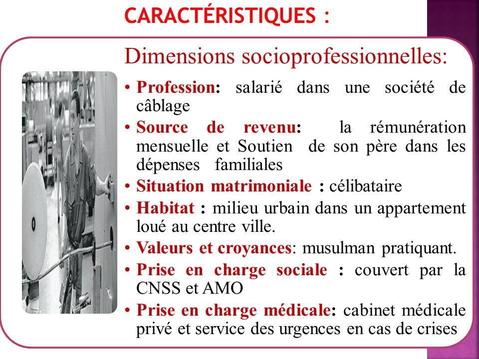 CARACTÉRISTIQUES : Dimensions socioprofessionnelles: