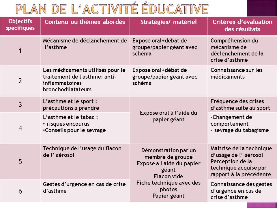Plan de l'activité éducative