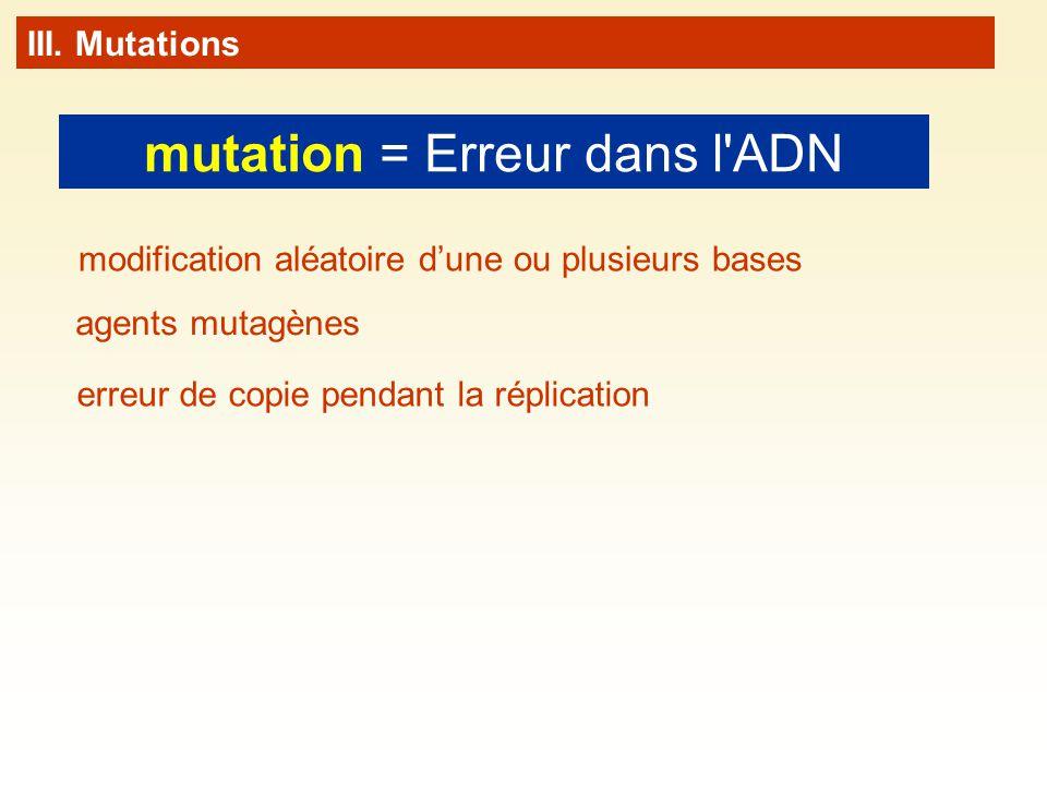 mutation = Erreur dans l ADN