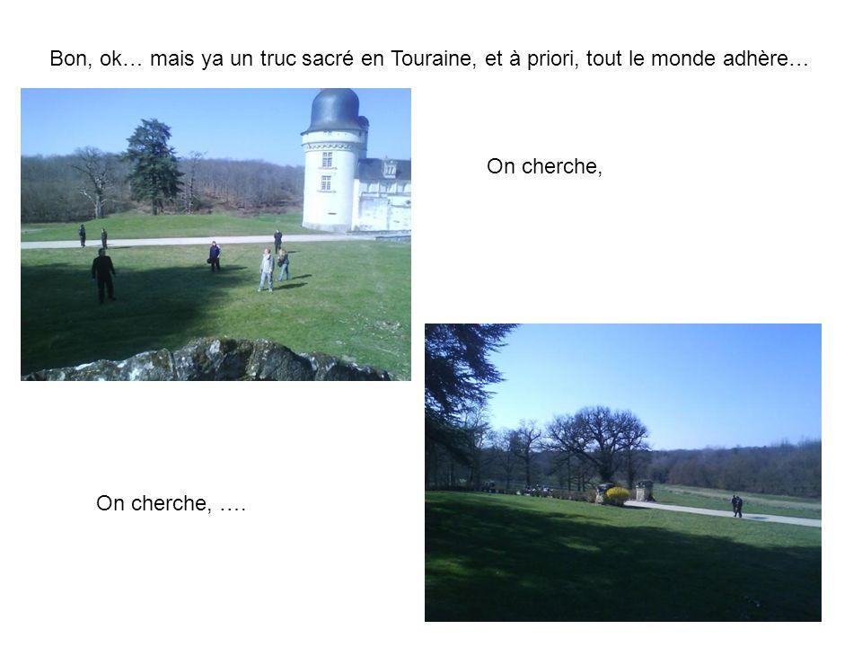 Bon, ok… mais ya un truc sacré en Touraine, et à priori, tout le monde adhère…