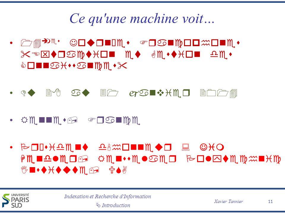 Ce qu une machine voit… 14èmes Journées Francophones Extraction et Gestion des Connaissances Du 28 au 31 janvier 2014.