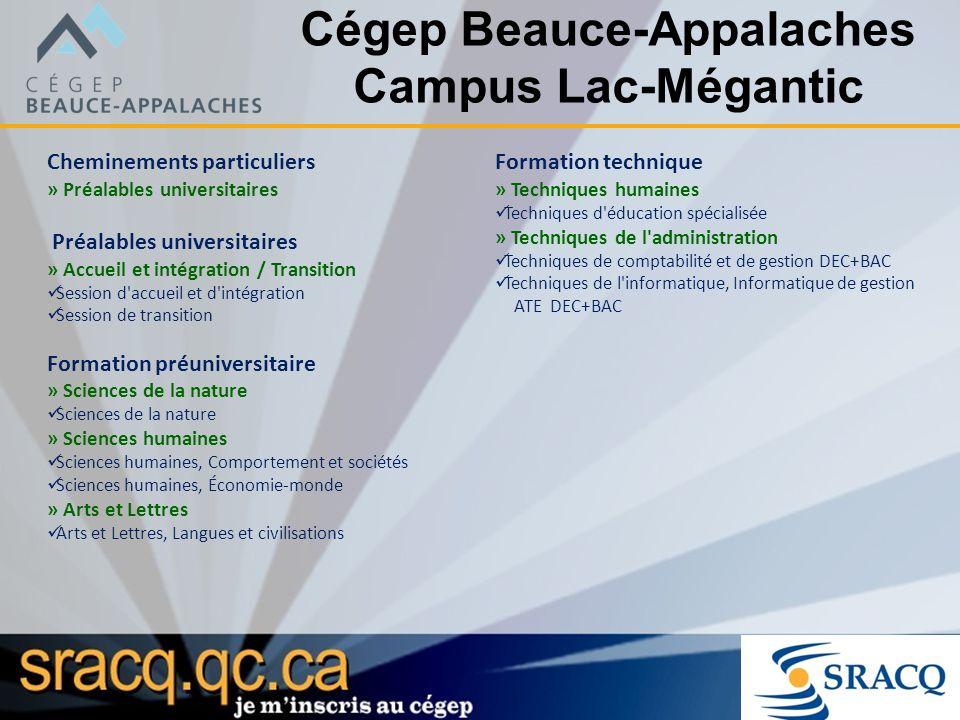Cégep Beauce-Appalaches Campus Lac-Mégantic