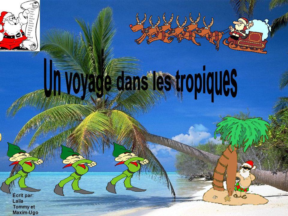 Un voyage dans les tropiques