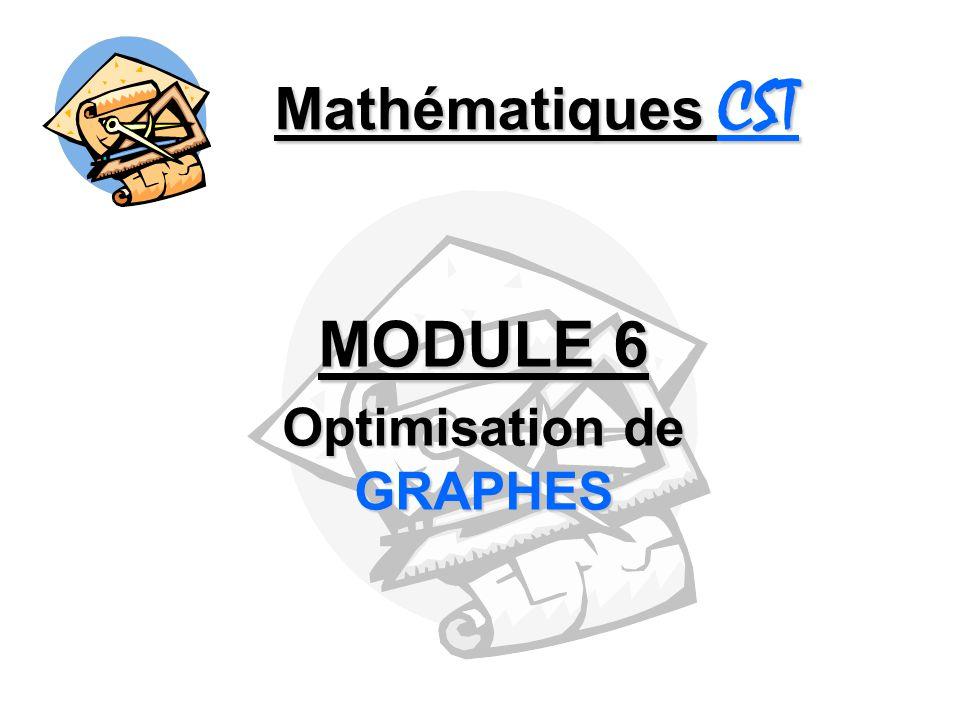 MODULE 6 Optimisation de GRAPHES
