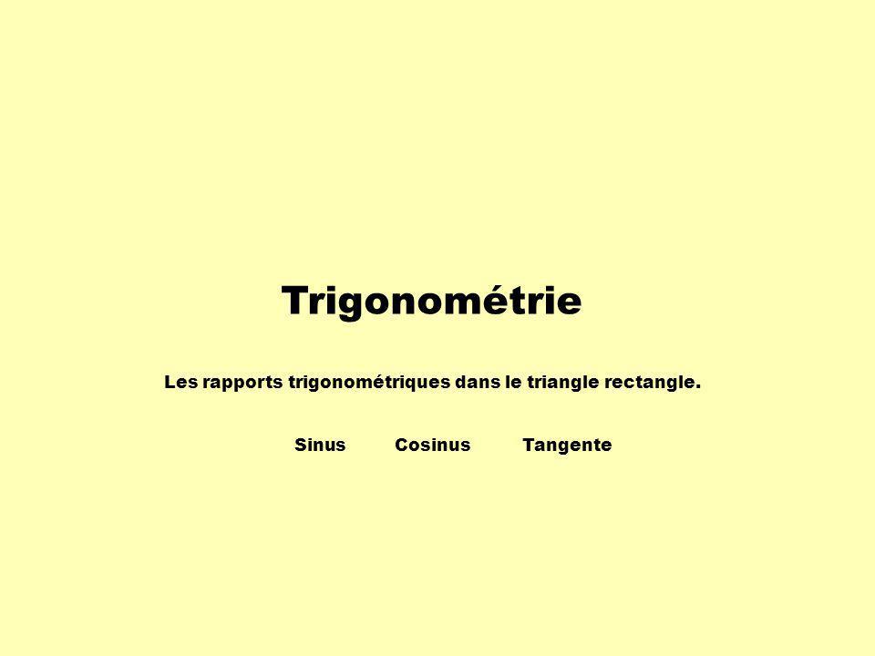 Trigonométrie Les rapports trigonométriques dans le triangle rectangle. Sinus Cosinus Tangente