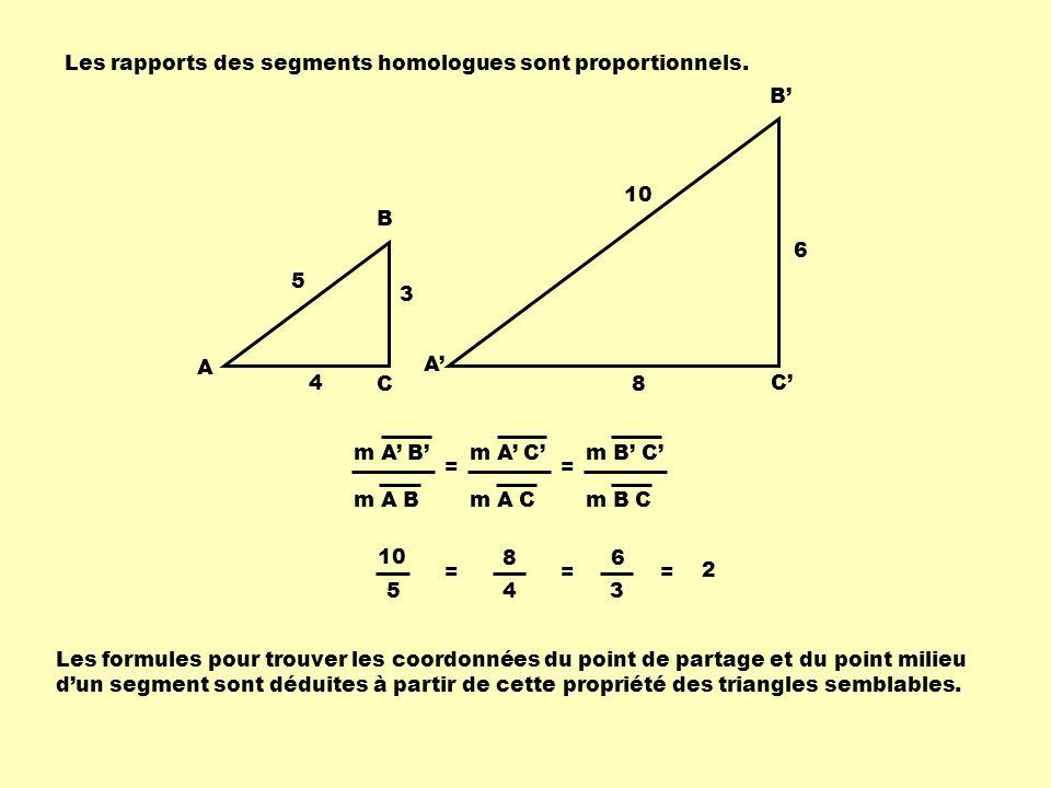 Les rapports des segments homologues sont proportionnels.