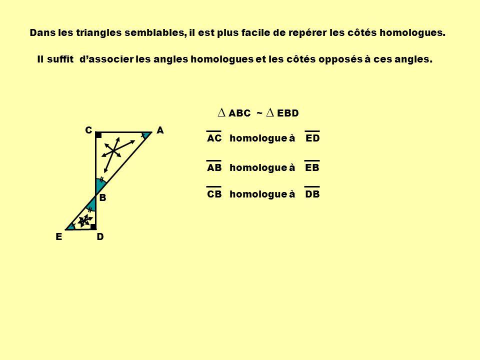 Dans les triangles semblables, il est plus facile de repérer les côtés homologues.