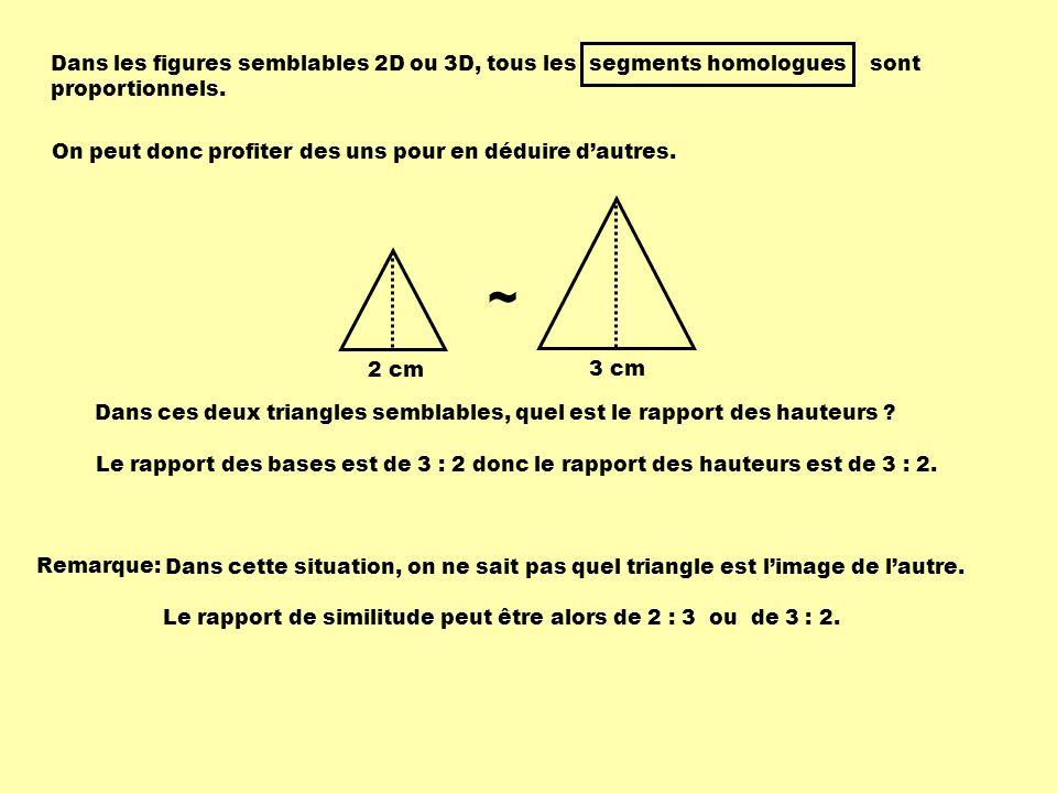 Dans les figures semblables 2D ou 3D, tous les segments homologues sont proportionnels.