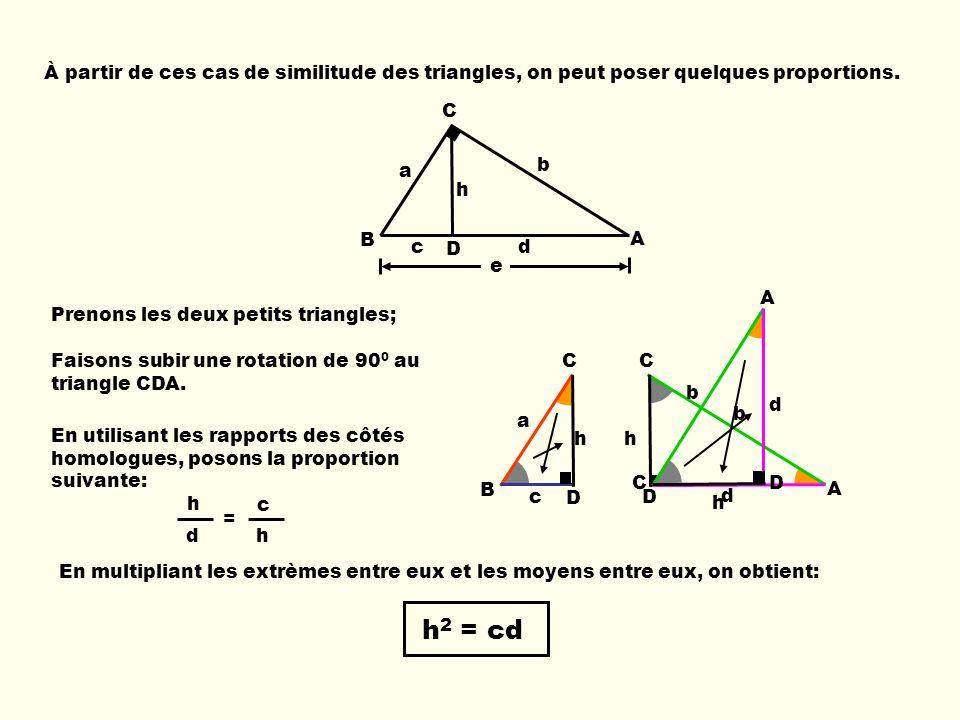 À partir de ces cas de similitude des triangles, on peut poser quelques proportions.