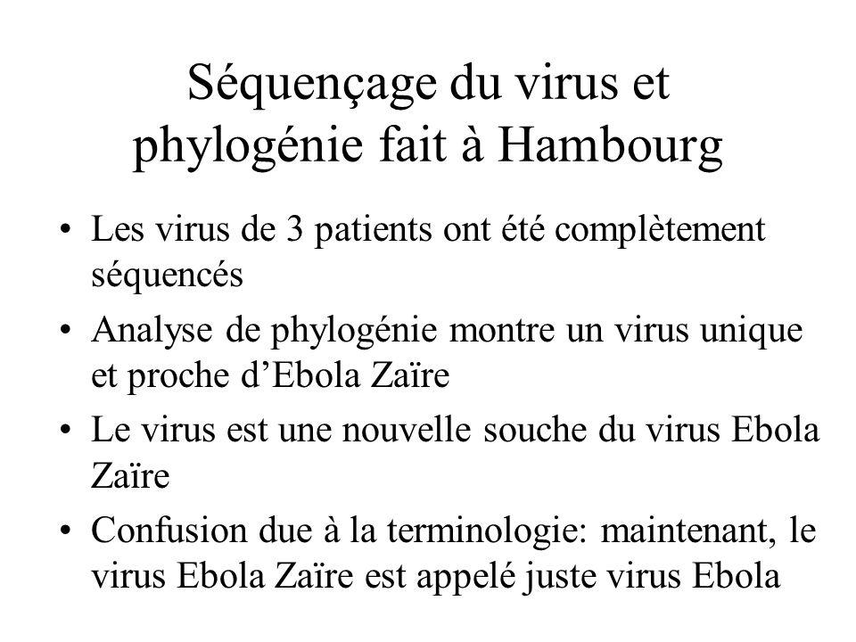 Séquençage du virus et phylogénie fait à Hambourg