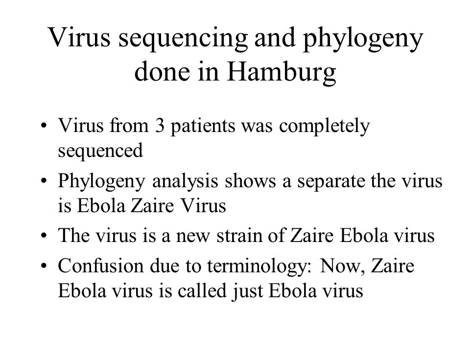 Virus sequencing and phylogeny done in Hamburg