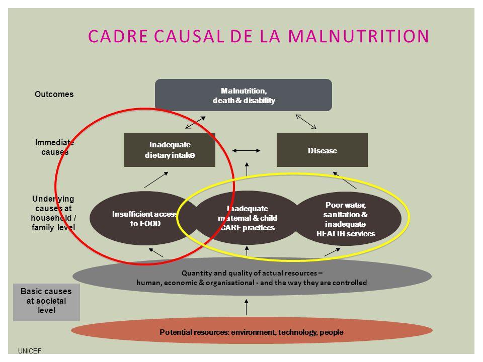 Cadre causal de la malnutrition