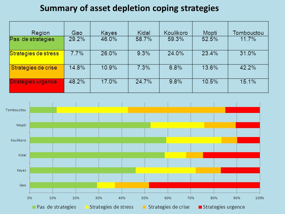Summary of asset depletion coping strategies