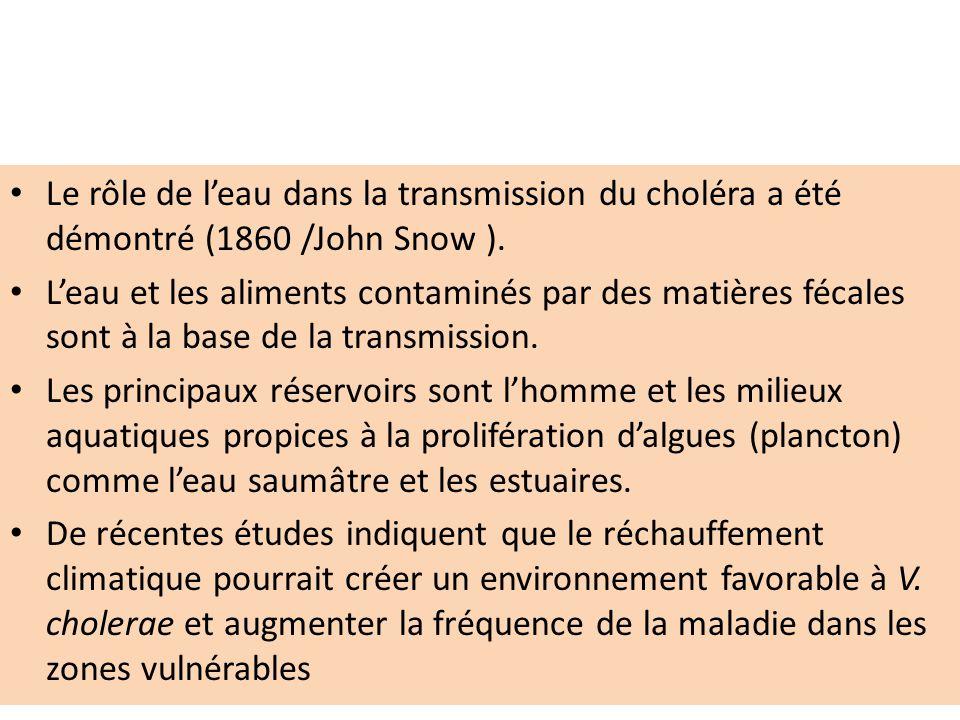 Le rôle de l'eau dans la transmission du choléra a été démontré (1860 /John Snow ).