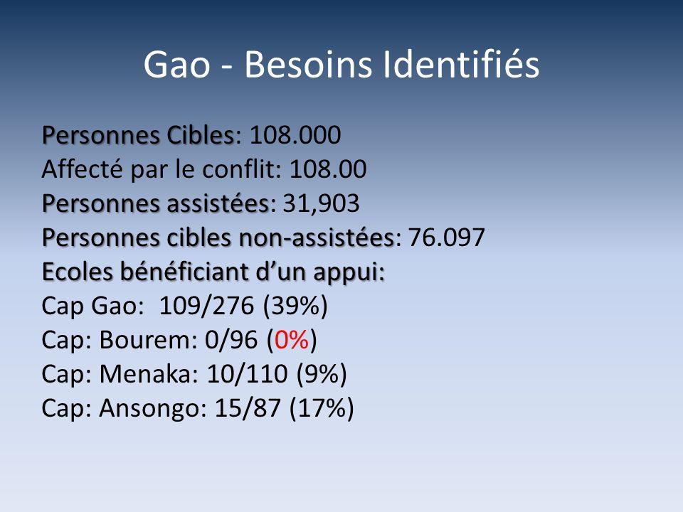 Gao - Besoins Identifiés