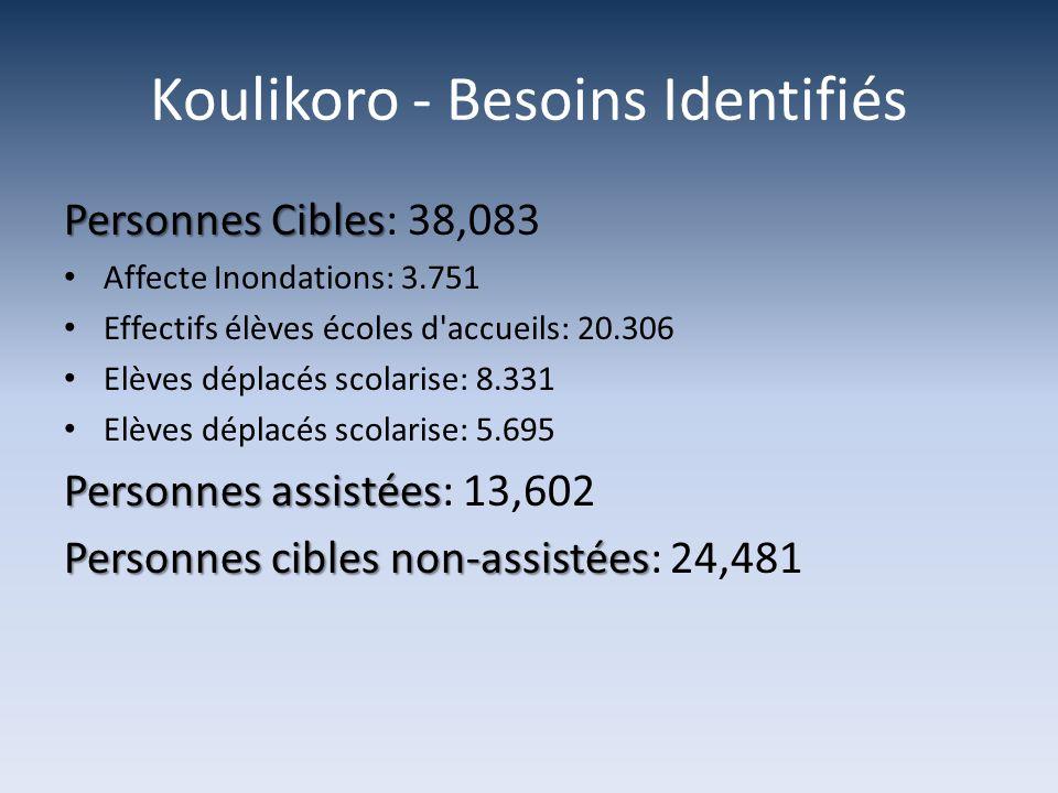 Koulikoro - Besoins Identifiés