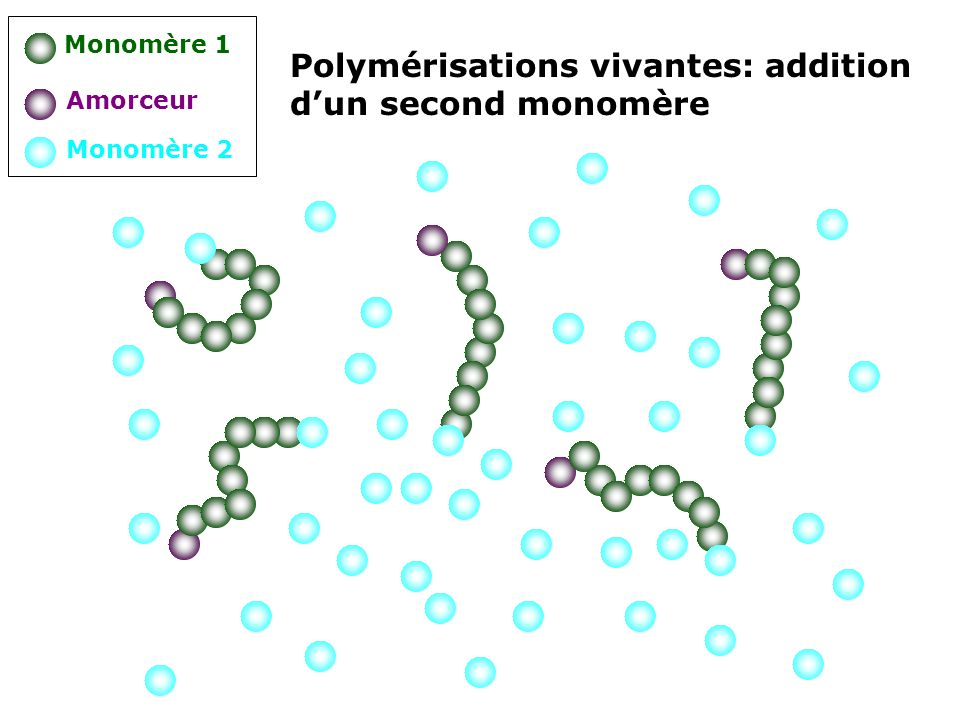 Polymérisations vivantes: addition d'un second monomère
