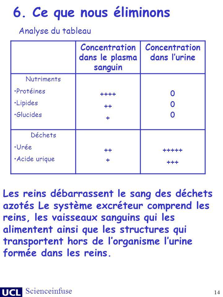Concentration dans le plasma sanguin Concentration dans l'urine