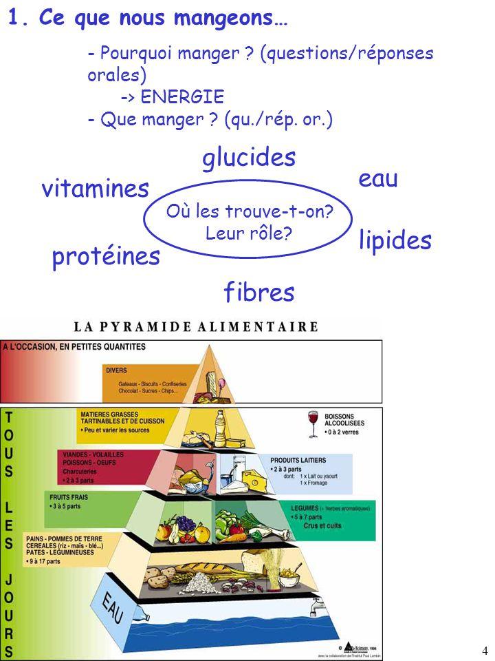 glucides eau vitamines lipides protéines fibres