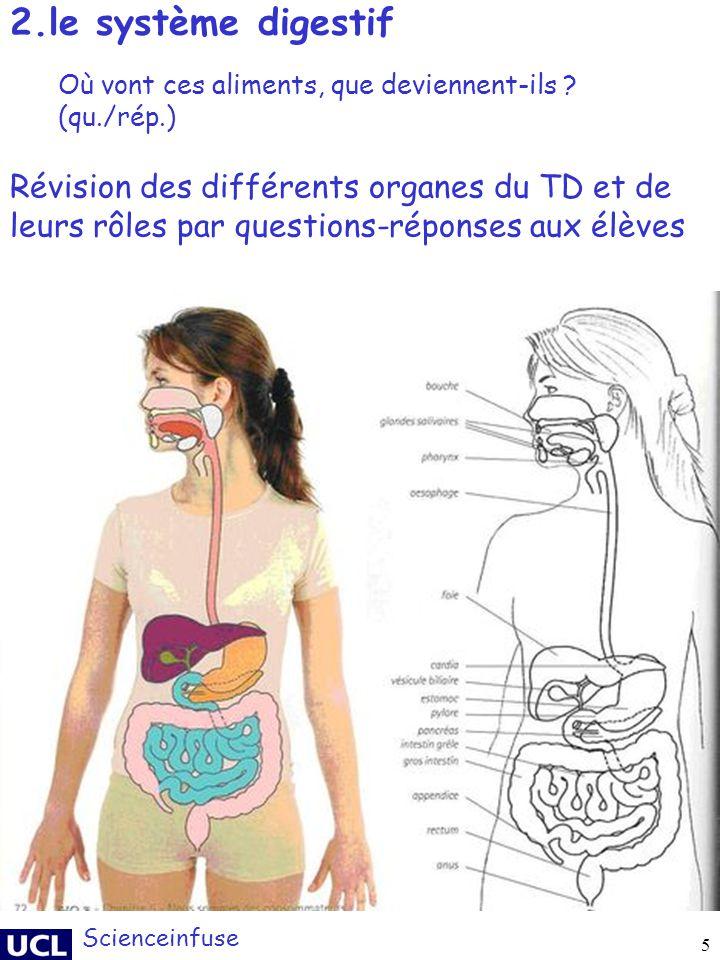 2.le système digestif Où vont ces aliments, que deviennent-ils (qu./rép.)