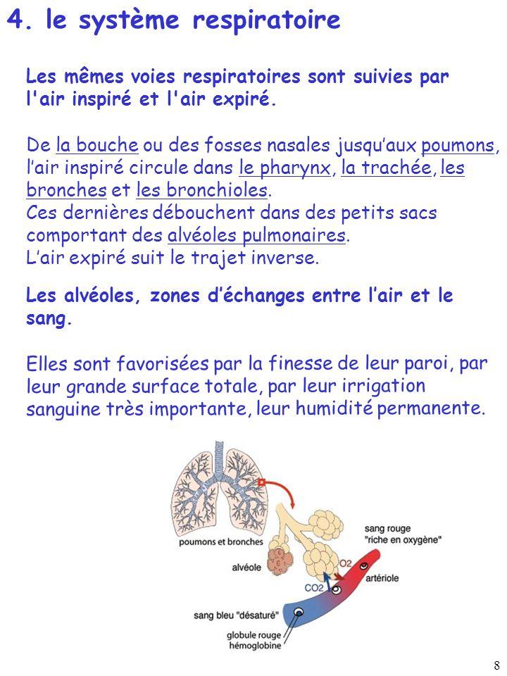 4. le système respiratoire