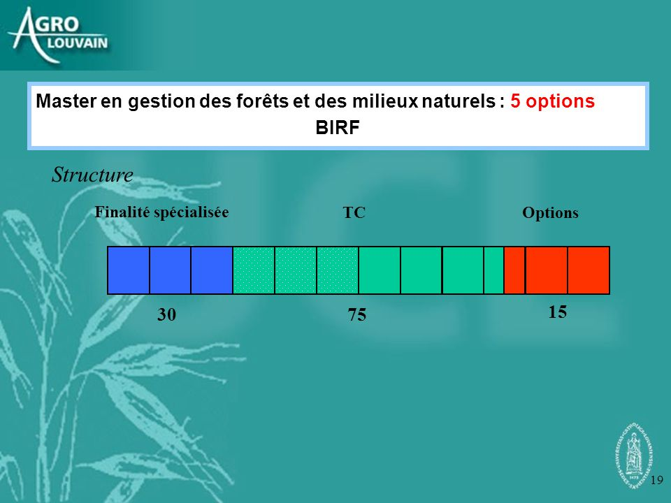 Master en gestion des forêts et des milieux naturels : 5 options