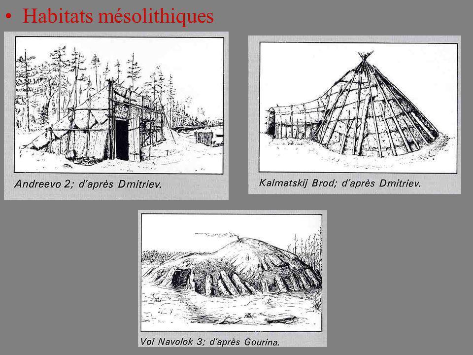Habitats mésolithiques