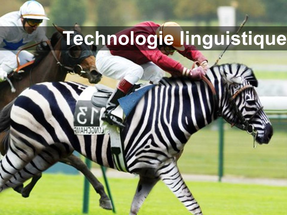 Technologie linguistique