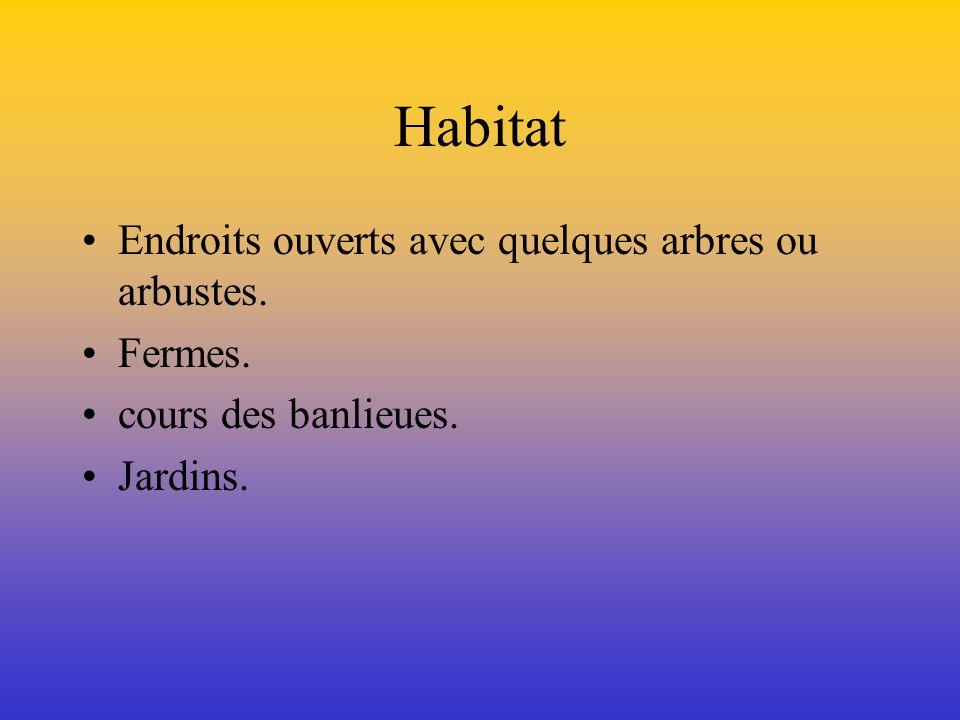Habitat Endroits ouverts avec quelques arbres ou arbustes. Fermes.