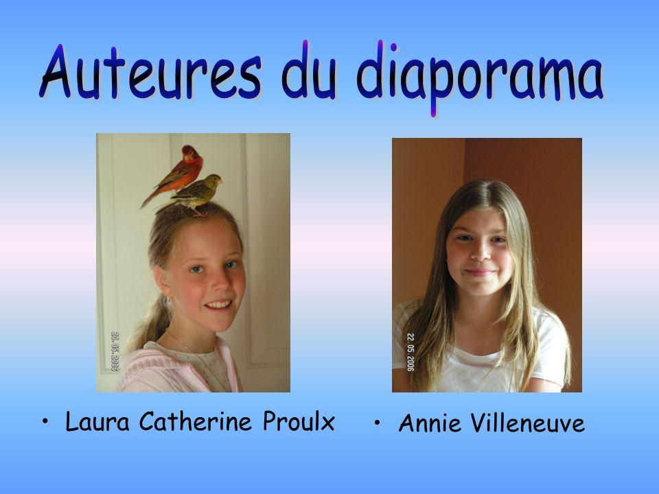 Auteures du diaporama Laura Catherine Proulx Annie Villeneuve
