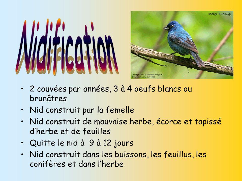Nidification 2 couvées par années, 3 à 4 oeufs blancs ou brunâtres