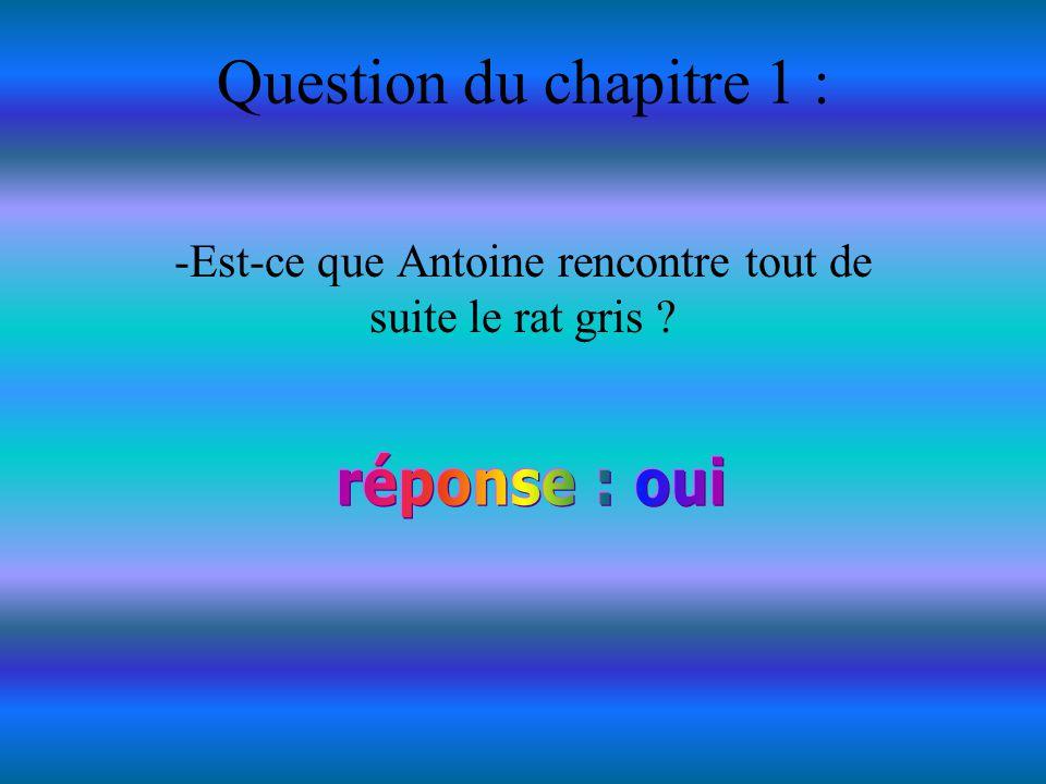-Est-ce que Antoine rencontre tout de suite le rat gris