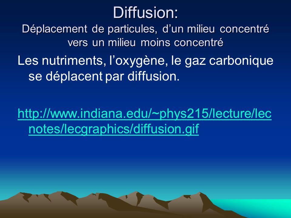 Diffusion: Déplacement de particules, d'un milieu concentré vers un milieu moins concentré