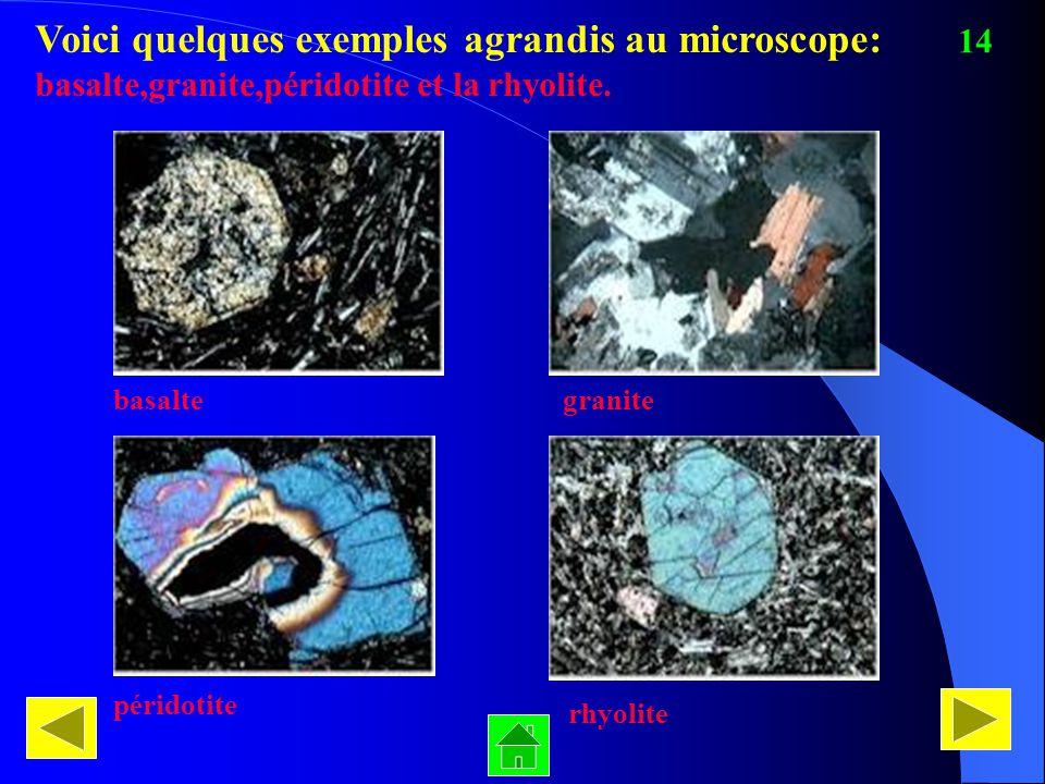 Voici quelques exemples agrandis au microscope: