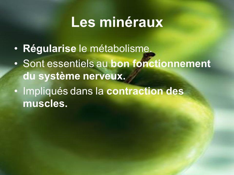 Les minéraux Régularise le métabolisme.